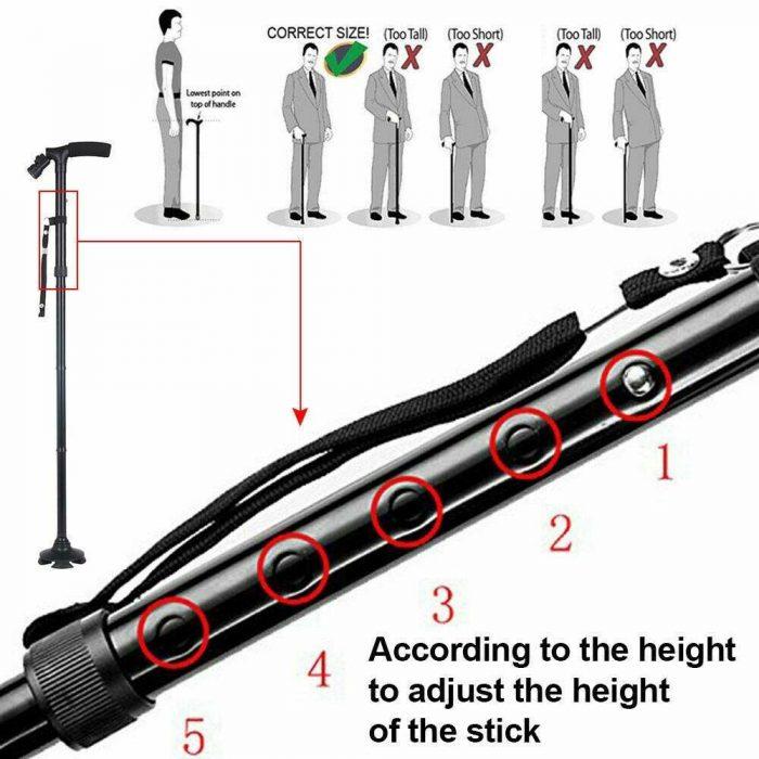 Walking-stick-wth-light-7
